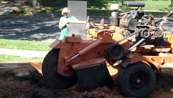 Industrial stump grinder