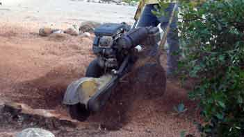 small stump grinder